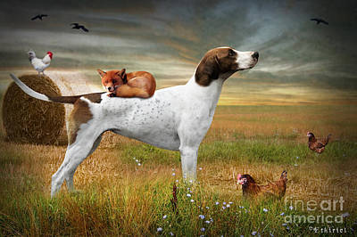 Fox And Hound Print by Ethiriel  Photography