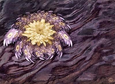 Apophysis Digital Art - Fractal Meets Nature by Gun Legler