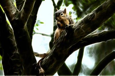 Fractal - Thumb Sucker - Robbie The Squirrel - 8574 Print by James Ahn