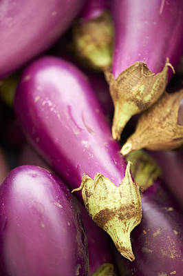 Y120907 Photograph - Fresh Eggplants by Cameron Davidson