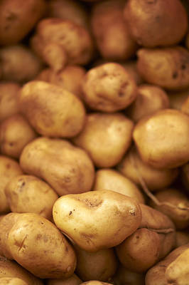 Y120907 Photograph - Fresh Potatoes by Cameron Davidson