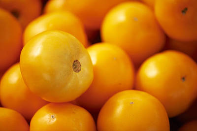 Y120907 Photograph - Fresh Yellow Tomatoes by Cameron Davidson