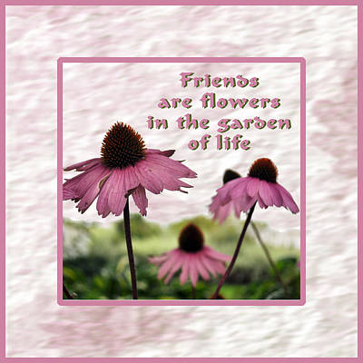 Flower Photograph - Friends Forever by Daryl Macintyre