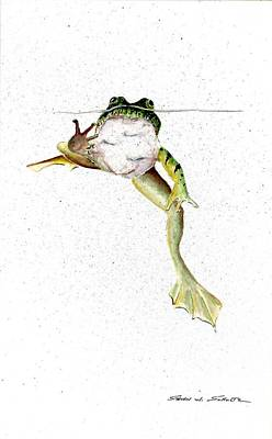 Frogs Painting - Frog On Waterline by Steven W Schultz