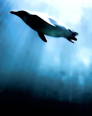 Penguin Digital Art - From The Depths by Sharon Lisa Clarke
