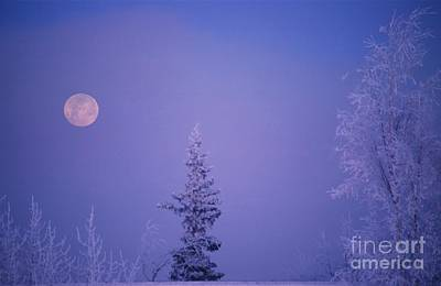 Frosty Moon Print by Ronnie Glover