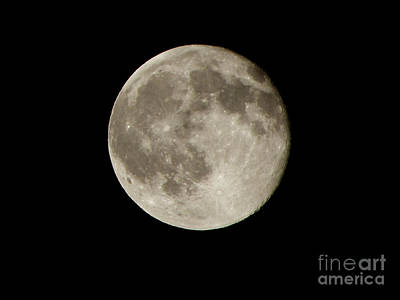 Halloween Photograph - Full Moon  by Pixel  Chimp