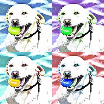 Funky Labrador  Print by Fraida Gutovich