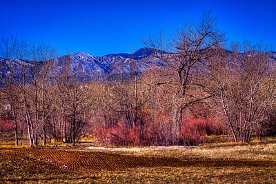 Furrowed Field At South Platte Park Print by David Patterson