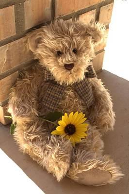 Teddie Photograph - Fuzzy Teddy by Lynnette Johns