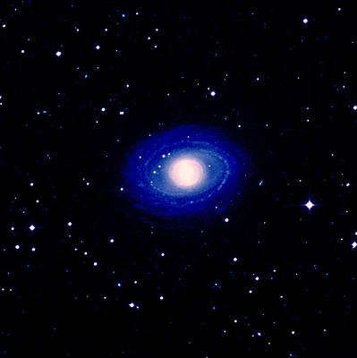 Galaxy Ngc 1398 Print by Celestial Image Co.