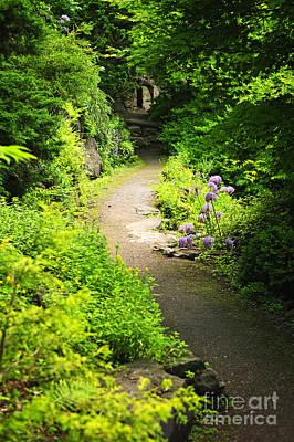 Lush Photograph - Garden Path by Elena Elisseeva