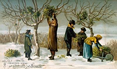 Snowy Trees Painting - Gathering Mistletoe by English School