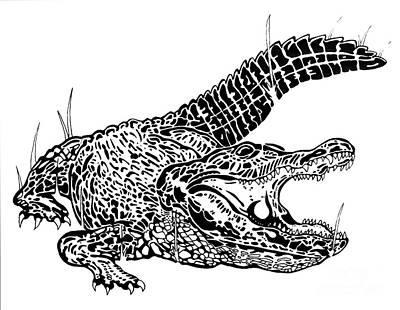 Brush.media Drawing - Gator Feed by Jack Norton