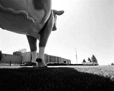 Giant Cow Waukesha Original by Jan Faul