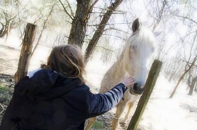 Girl Stroking Camargue Horse At Fence Print by Sami Sarkis
