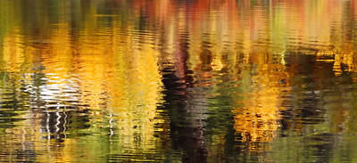 Glorious Reflections Print by Terril Heilman