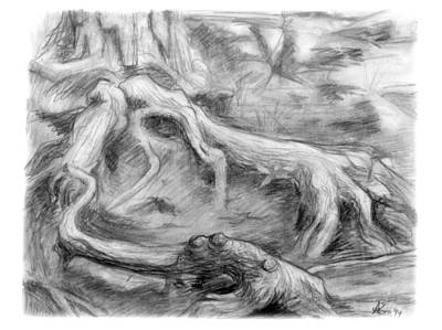 Middle Ground Drawing - Gnarled by Adam Long
