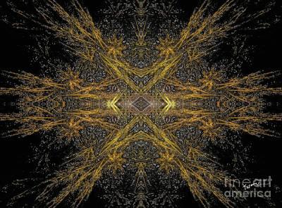 Gold Star Finder Print by David Tavhara
