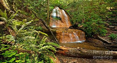 Waterfall Photograph - Golden Cascade Falls by Matt Tilghman
