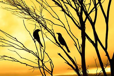 Lovebird Digital Art - Golden Silhouette  by Bernard Yong