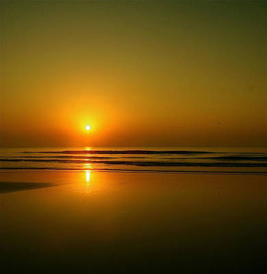 Golden Sunrise Print by Darren Cole Butcher