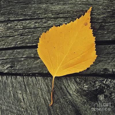 Ending Life Photograph - Gone For Good by Priska Wettstein