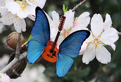 Blue Butterfly Digital Art - Good Morning Rock by Eric Kempson