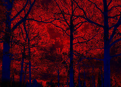 Gothic Red And Blue Surreal Fantasy Trees Print by Kathy Fornal