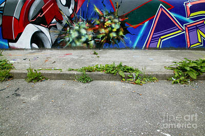 Graffiti Footpath Print by Richard Thomas