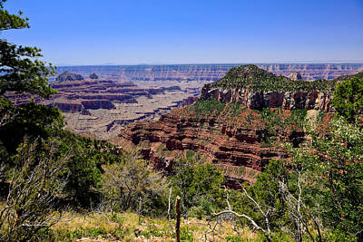 Canyon Photograph - Grand Canyon North Rim View by Greg Norrell