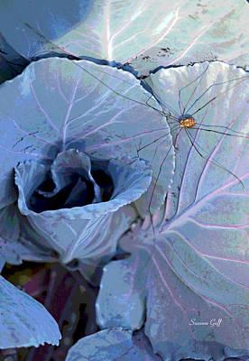 Cabbage Digital Art - Granddaddy Long Legs by Suzanne Gaff