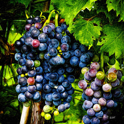 Wine Painting - Grapes Ready For Harves by Tom Bell