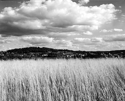 Grasses Overlooking Wale Original by Jan Faul