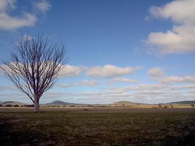 Magpies Digital Art - Grazing Land by Julie Butterworth