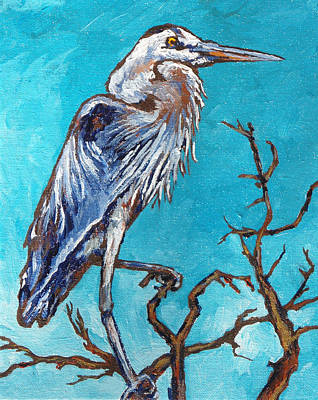 Great Blue Heron Print by Sandy Tracey
