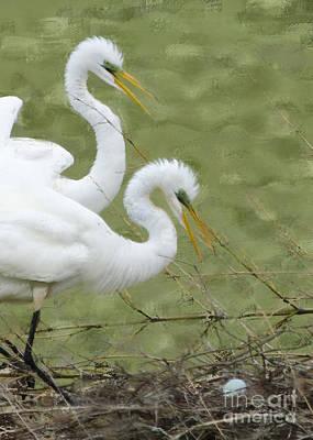 Egret Digital Art - Great Egrets Nesting by Betty LaRue