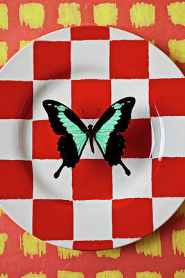 Green And Black Butterfly On Red Checker Plate Print by Garry Gay