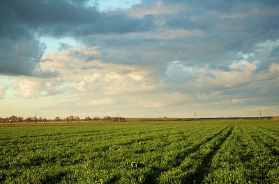 Stockton Photograph - Green Field With Clouds by Topher Simon photography