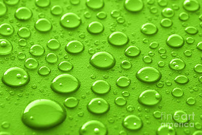 Rain Droplet Photograph - Green Water Drops by Blink Images