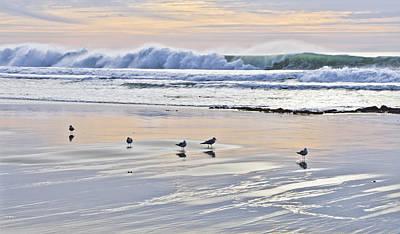 Coastal Photograph - Green Wave At Sunset by Priya Ghose