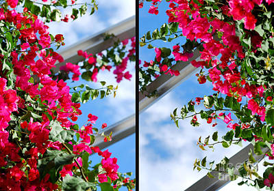 Greenhouse View Diptych Print by Nancy Mueller