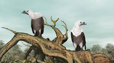 Griffon Digital Art - Griffon Vultures by Walter Colvin