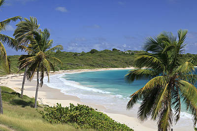 Halfmoon Bay, Antigua And Barbuda Print by Michele Falzone