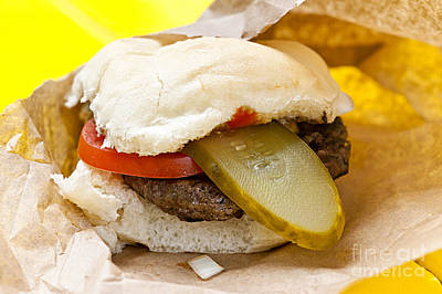 Burgers Photograph - Hamburger With Pickle And Tomato by Elena Elisseeva