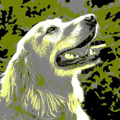 Golden Retriever Pop Art Photograph - Happy Dog by Marilyn Hunt