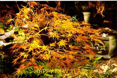 Rod Ismay Photograph - Happy New Year  - Card by Rod Ismay