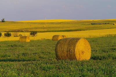 Feild Photograph - Harvest In Montana by Jeff Swan