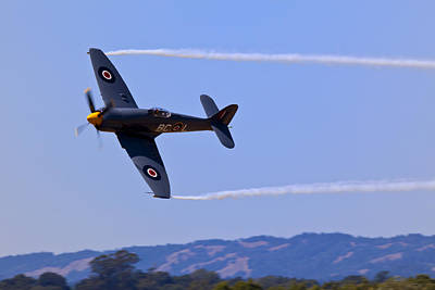 Fury Photograph - Hawker Sea Fury by Garry Gay