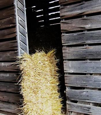Hay-day Print by Todd Sherlock